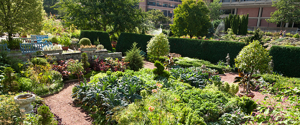 CALS_LandscapeArch-ACG_Edible_Garden